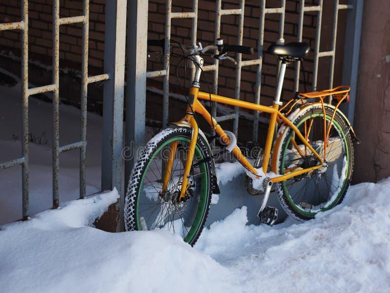 Vélo droit, à la lumière de coucher du soleil photographie stock libre de droits