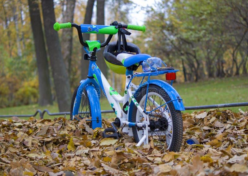 vélo du ` s d'enfants en parc image libre de droits