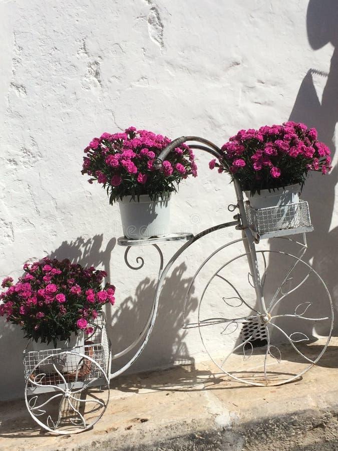 Vélo en fleurs royalty free stock photos