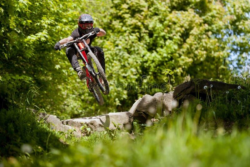 Vélo Forest Downhill de Mountainbiker photographie stock