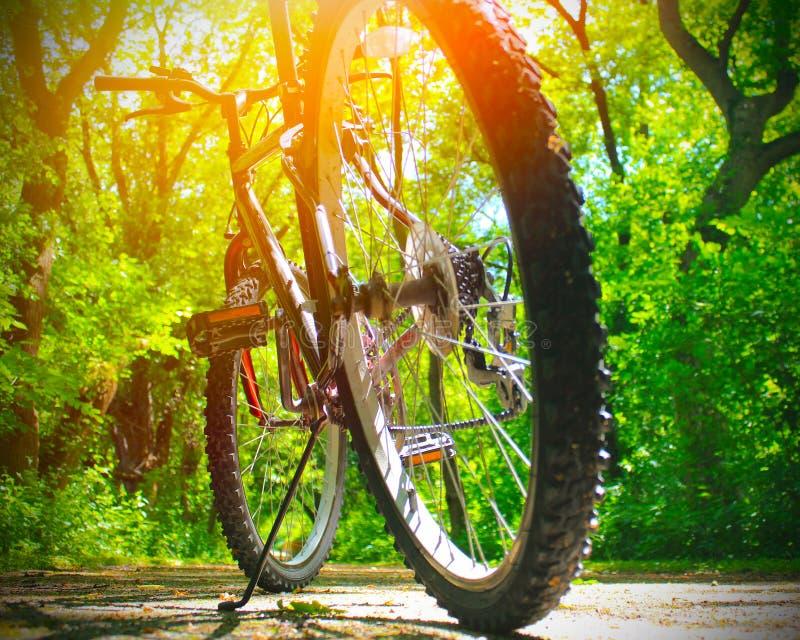 Vélo sur le journal photos libres de droits