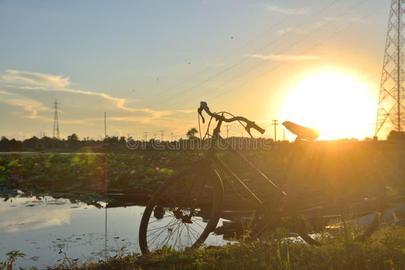 Vélo sur le paysage photographie stock