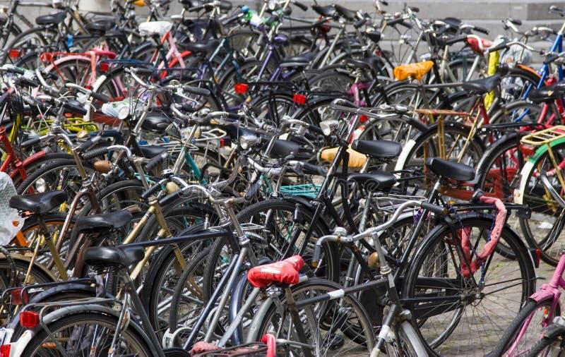 Vélos photo libre de droits