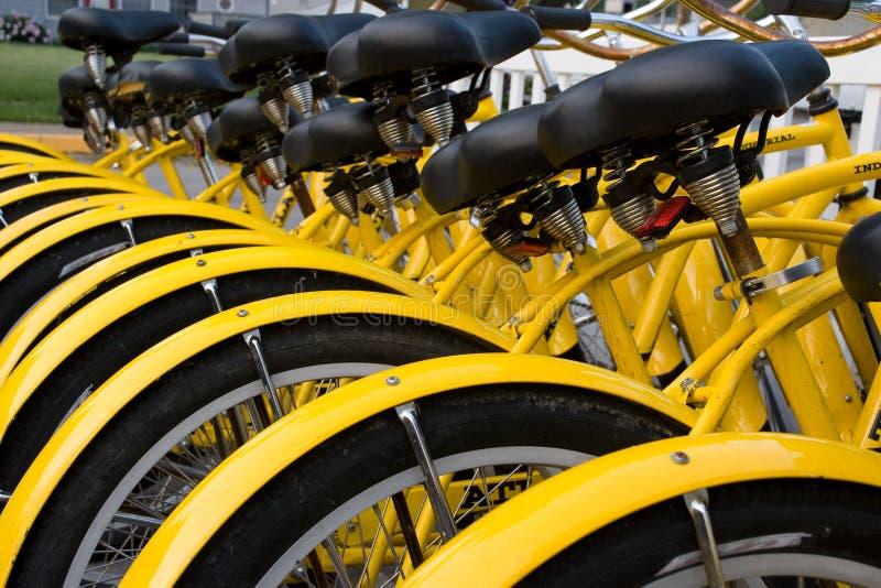 Vélos de location image stock