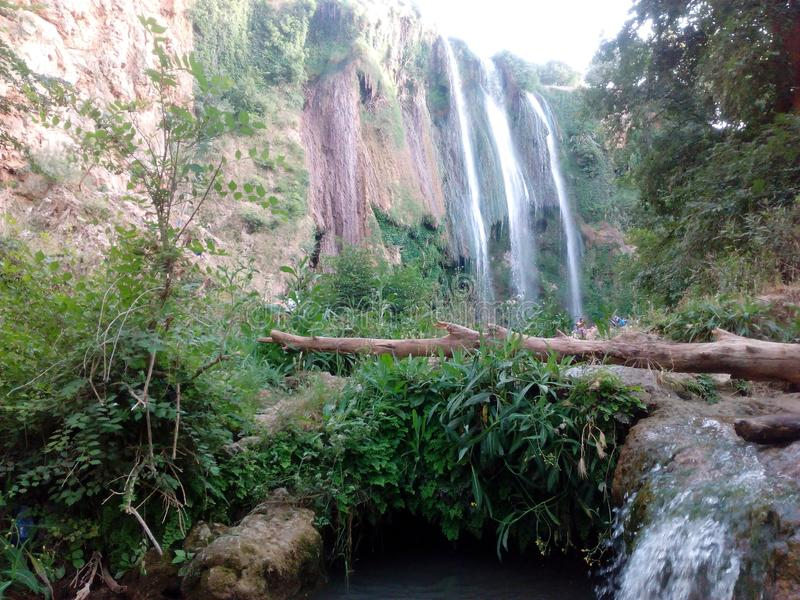 Vénérez la nature dans la ville Algérie de tiaret photographie stock