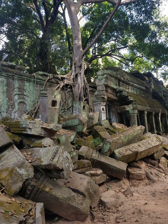 Vérité de temple photos stock