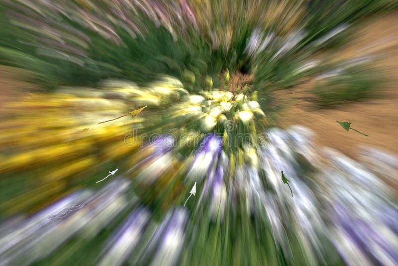 Vértigos, tensión, problema de la visión y o peligro fotografía de archivo libre de regalías