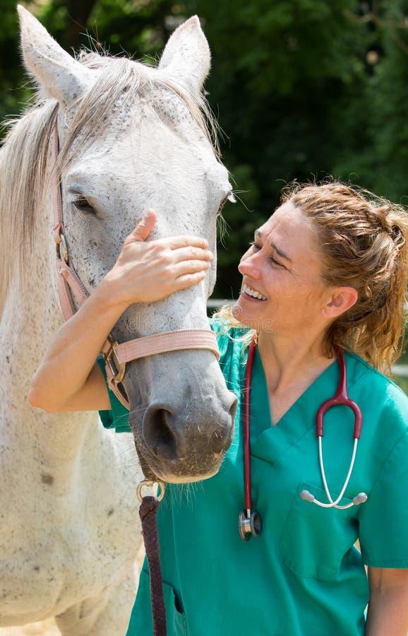 Vétérinaire à une ferme images stock