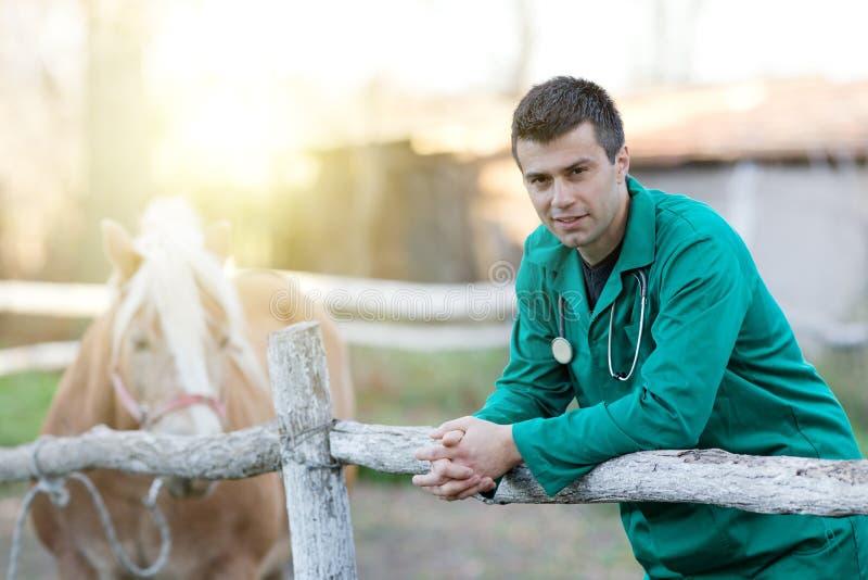 Vétérinaire avec le cheval de poney photo stock