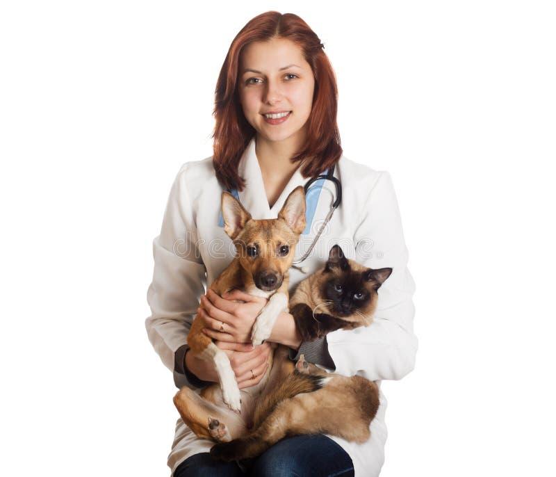 Vétérinaire de femme avec des animaux familiers photographie stock libre de droits