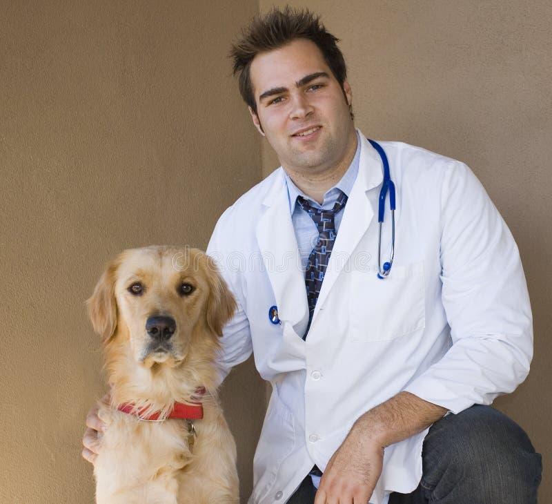 Vétérinaire et chien d'arrêt 3 photo stock