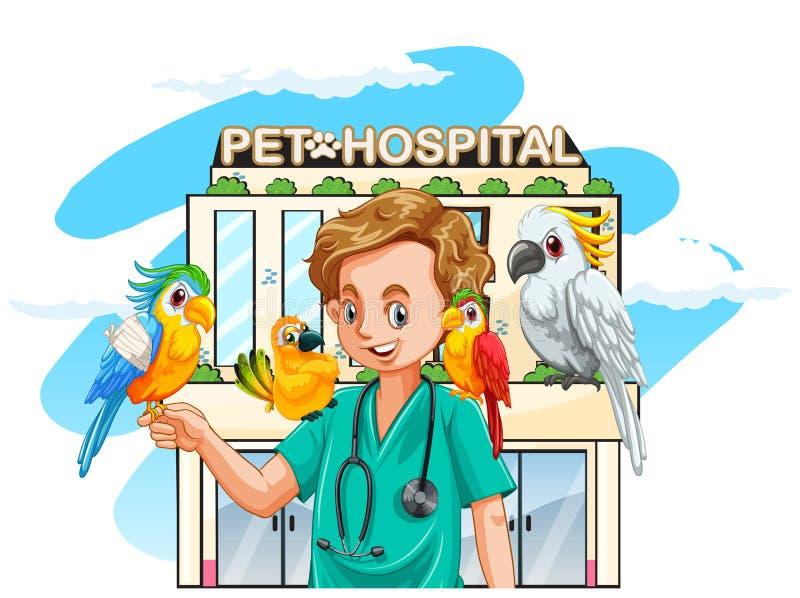 Vétérinaire et perroquets à l'hôpital illustration libre de droits