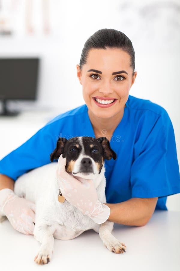 Vétérinaire féminin amical photo stock