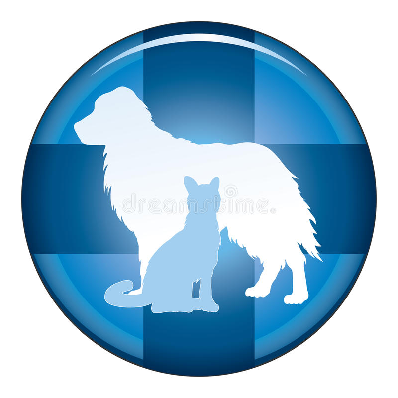 Vétérinaire Medical Symbol Button illustration stock