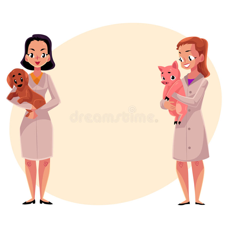 Vétérinaires féminins, vétérinaires dans des manteaux médicaux tenant le chien et le porc illustration de vecteur