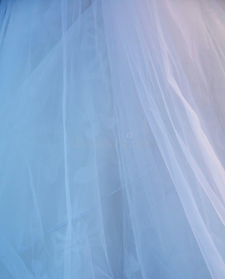 Véu da noiva imagem de stock