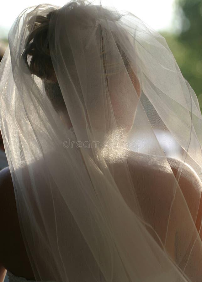 Véu nupcial Wedding imagens de stock royalty free