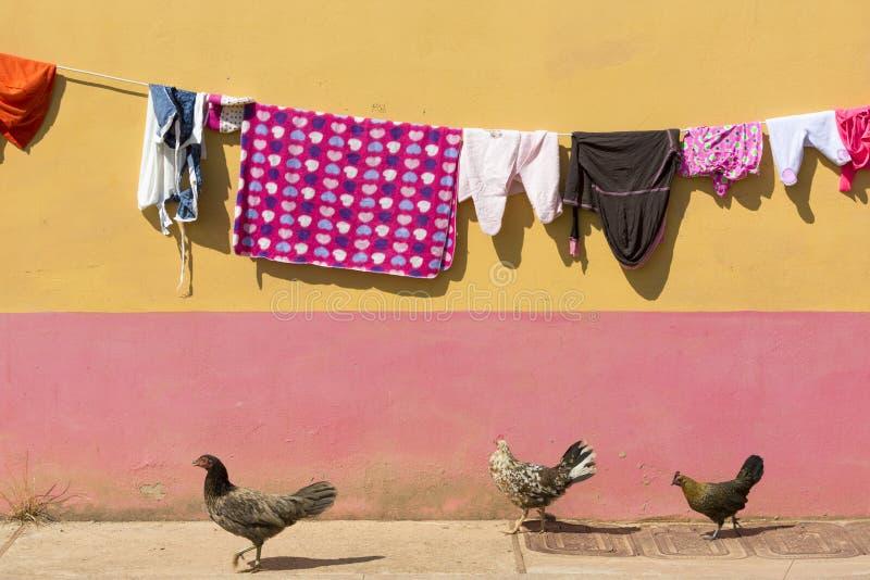 Vêtements de séchage avec le fond et le poulet colorés, Guatape, col photographie stock