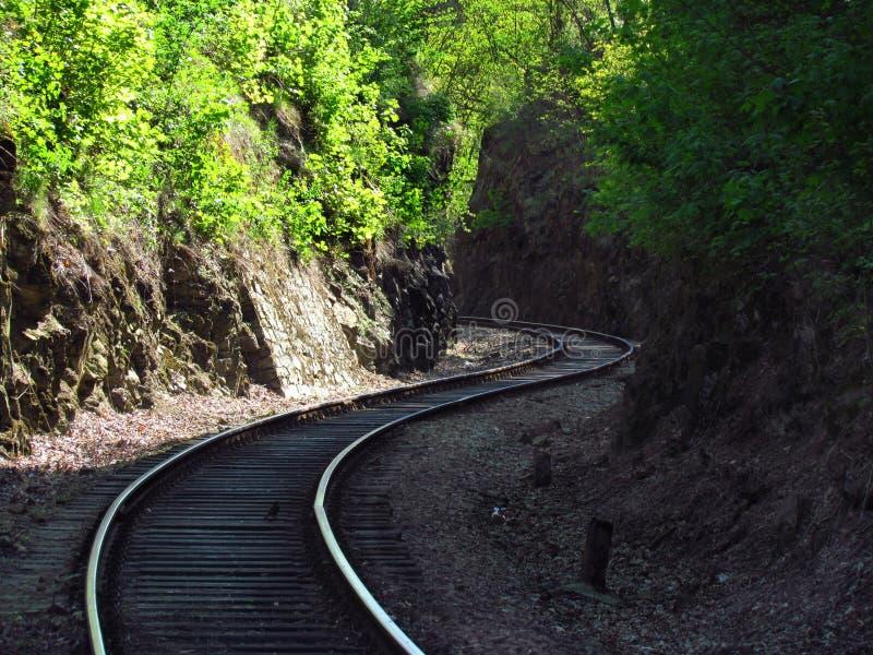 Vías ferroviarias viejas en la naturaleza, viajando en tren fotos de archivo