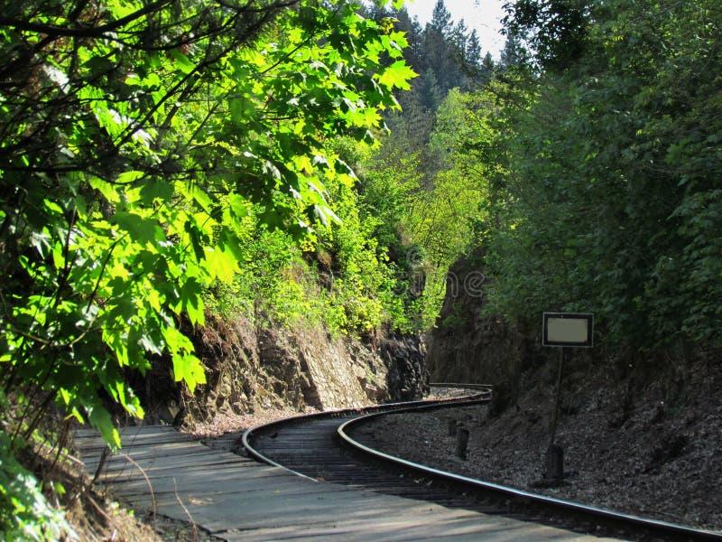 Vías ferroviarias viejas en la naturaleza, viajando en tren imagen de archivo
