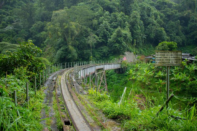 Vías viejas del tren en selva colombiana imagen de archivo libre de regalías