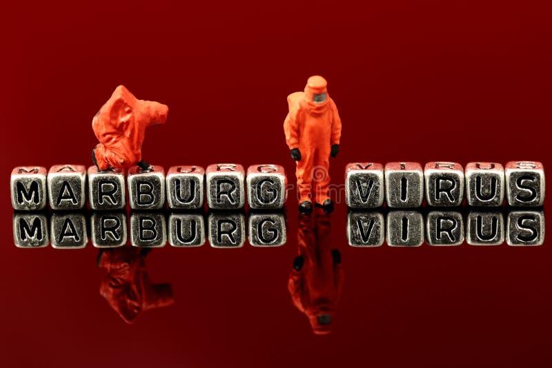Vírus de Marburg em grânulos com a equipe diminuta do produto químico do modelo à escala imagens de stock royalty free