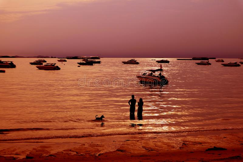 Vóór de zonsondergang bij een tropisch strand stock afbeelding