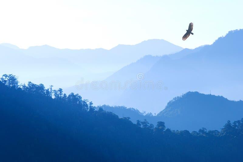 Vôo da águia sobre montanhas da névoa fotografia de stock royalty free