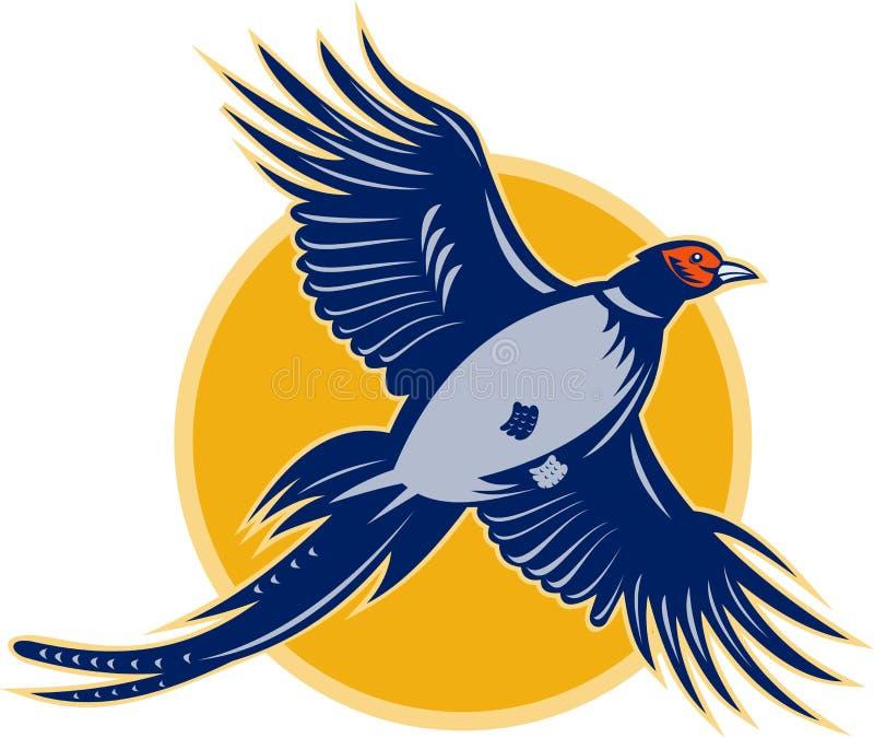 Vôo do pássaro do faisão ilustração stock