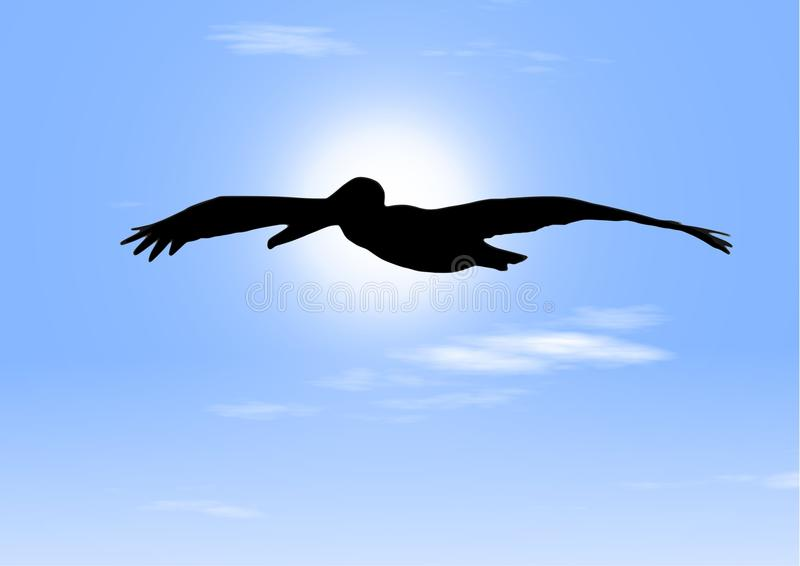Vôo do pelicano - pássaro calmo no céu ilustração stock