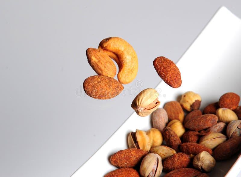 Vôo nuts libanês fotografia de stock