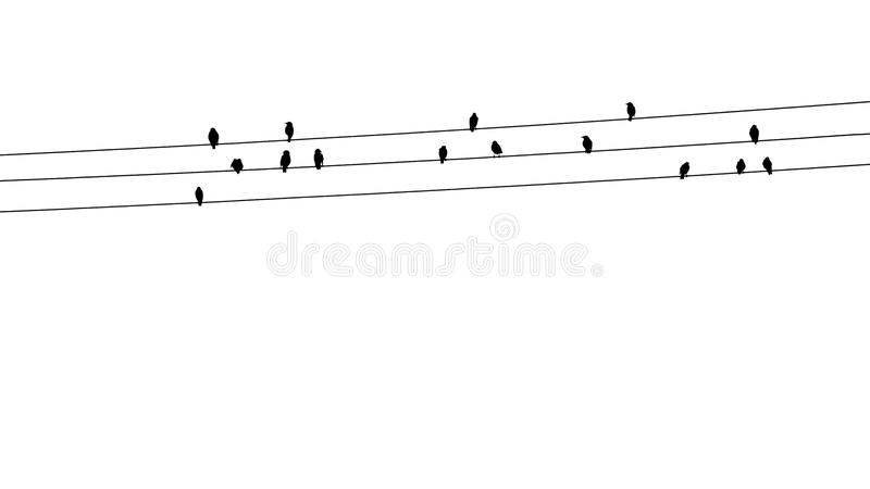 Vögel auf Drähten lizenzfreies stockbild
