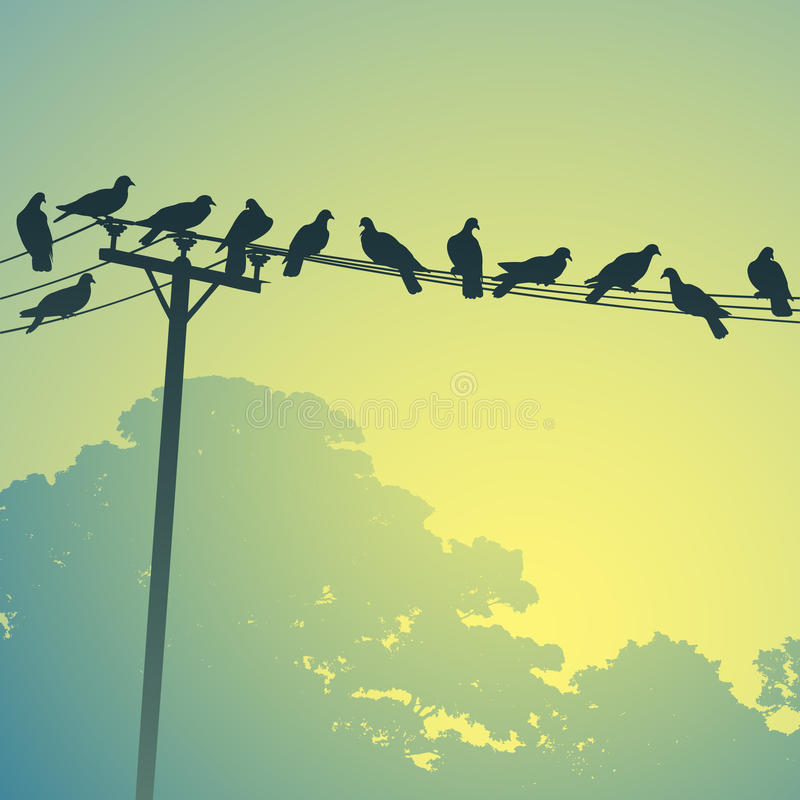 Vögel auf Zeilen lizenzfreie abbildung