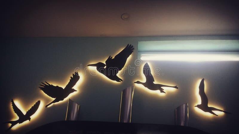 Vögel der gleichen Federmenge zusammen! lizenzfreies stockbild