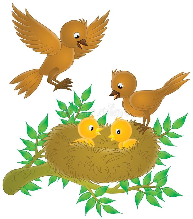 Vögel und Nestlings stock abbildung