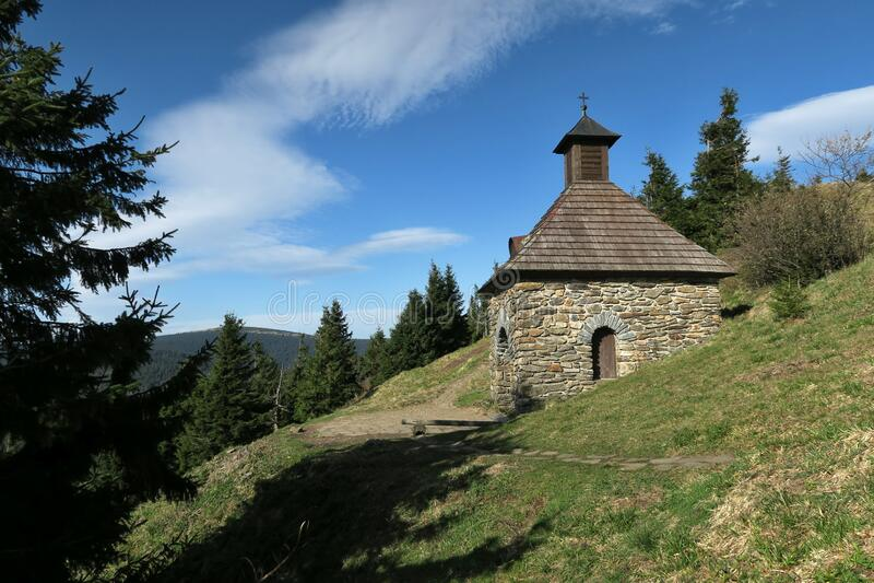 V?esová studánka - Frühling in der Nähe von ?ervenohorské sedlo im Jeseníky-Gebirge lizenzfreie stockbilder