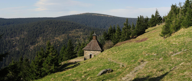 V?esová studánka - Frühling in der Nähe von ?ervenohorské sedlo im Jeseníky-Gebirge stockbild