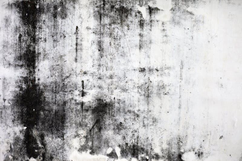 vägg för sten för detaljerat fragment för bakgrund hög royaltyfri fotografi