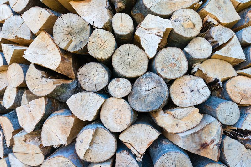 V?gg av staplade tr?journaler som bakgrund arkivbild