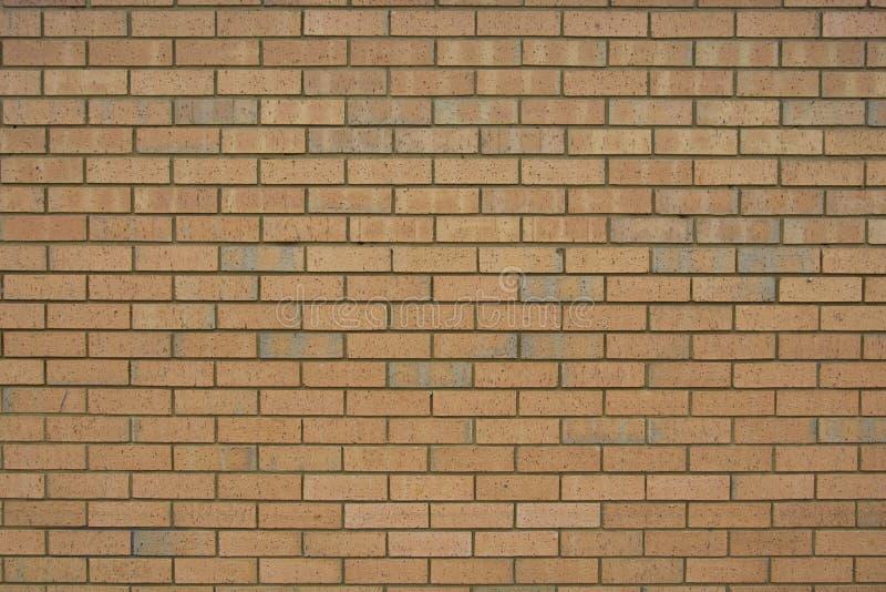 V?gg f?r r?d tegelsten f?r bakgrundstextur Gammal engelsk tegelstenvägg arkivbilder