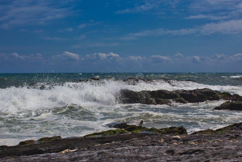 V?gor p? stranden av ett mediateraneahav royaltyfri bild