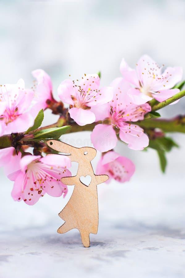 V?rblomningbegrepp P?skbegrepp, miniatyrkanin, n?rbild f?r blomningtr?d och kopieringsutrymme Rosa naturlig textur av naturligt arkivbild