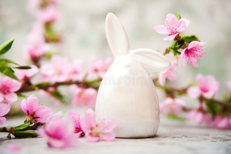 V?rblomningbegrepp P?skbegrepp, miniatyrkanin, n?rbild f?r blomningtr?d och kopieringsutrymme Rosa naturlig textur av naturligt royaltyfria bilder