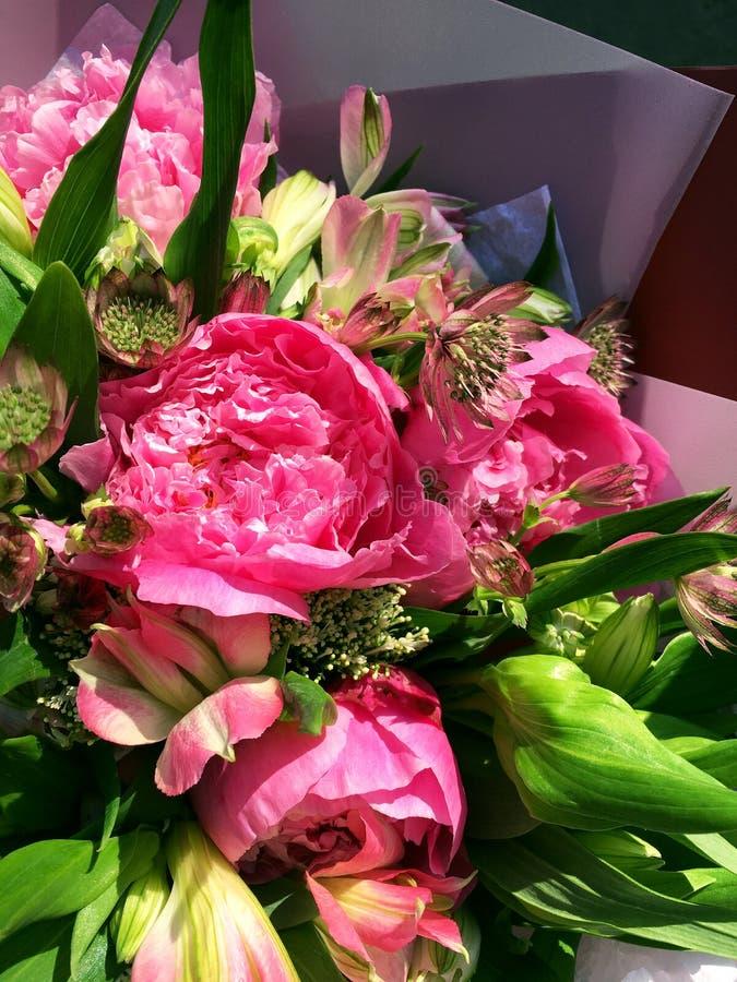 V?rbukett av blandade f?rgrika blommor Blommabukett inklusive rosa pion och rosa alstroemeria, Astrantia och grönt blad arkivbilder