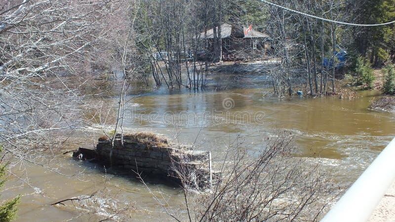 V?rflod i Huntsville, Ontario, 2013 royaltyfri fotografi