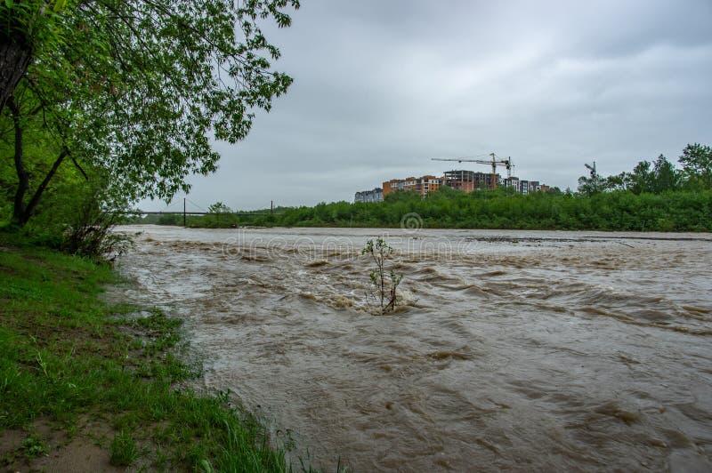 V?rflod p? floden royaltyfria bilder