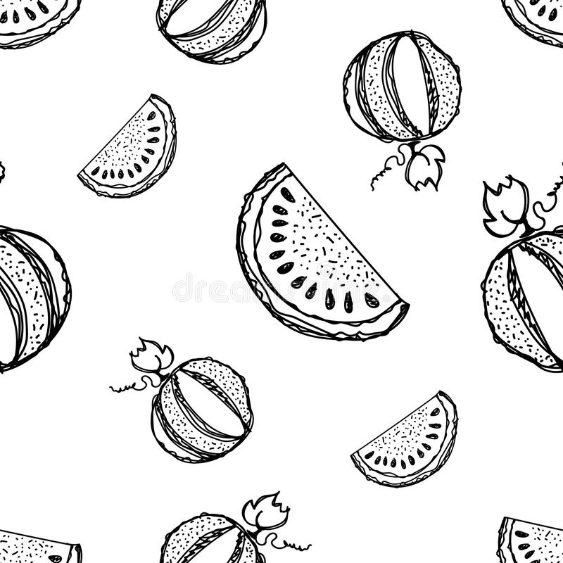 V. Seamless vector pattern. Hand drawn black and white fruits illustration of watermelon on the white background. Line drawing royalty free illustration