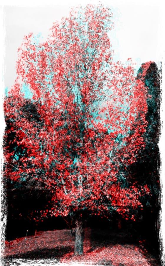 V1x-träd fotografering för bildbyråer