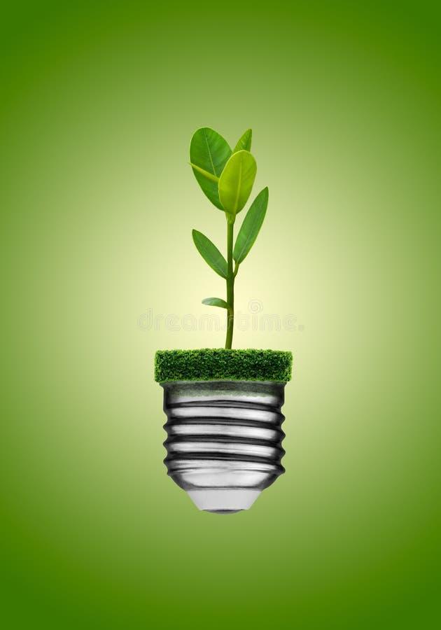 Va il concetto verde immagini stock