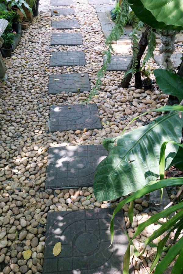 Vaag beeld van bakstenenwegen met steen en boom stock foto